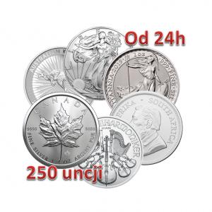 Srebro inwestycyjne LBMA 250 uncji monet srebra